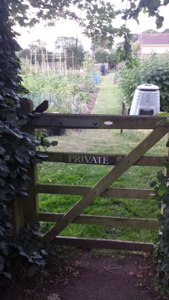 """Private: Keep Out!!"" Said the baby blackbird."